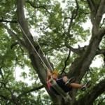 木のブランコ♪