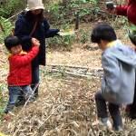 竹トランポリン