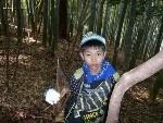 竹の子ほり