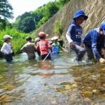 吉田川探検