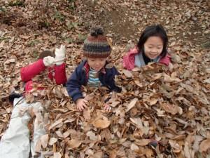 葉っぱのお布団