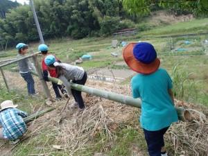 竹で網を押さえるよ (640x480)