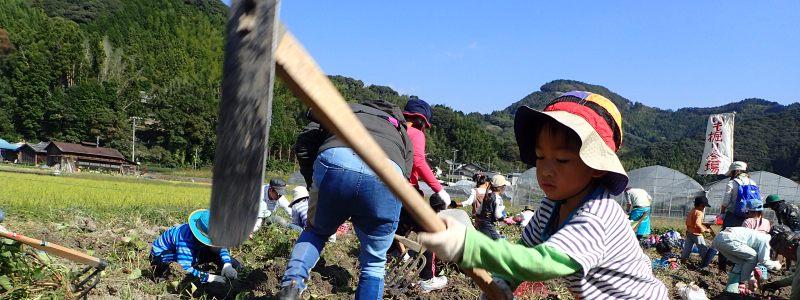 ワク☆ドキ★ぐりぃ~んず2017【1/28みそ作り】12/27~1/17受付