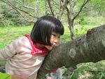 木と仲良し