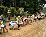 【報告】わんぱく里山 6/11「さあ、田植えだ。米作りの始まり」