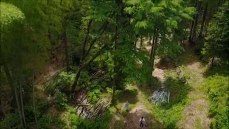 【動画】竹きりプロジェクト「見ちがえるほどに!!」