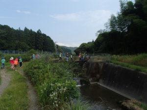 【報告】里山adventure 夏だ!川だ!びしょぬれだ!
