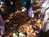26落ち葉の布団