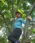 ぼくも木登り