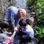 【報告】里山BASE+(ぷらす)~7月の川チャレンジ~