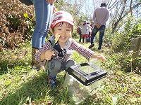 【報告】10/7里山のかやねずみ・にちようび 秋のいきものを見つけよう!