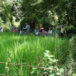 【報告】里山de遊び隊 8/26「竹と水を使って遊んじゃおう!」