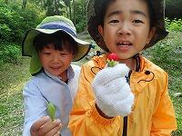 【報告】里山QUEST4~6月 ーフィールドを探険ー