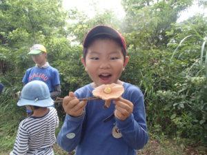 【報告】里山BASE in summer~いっぱい発見!~