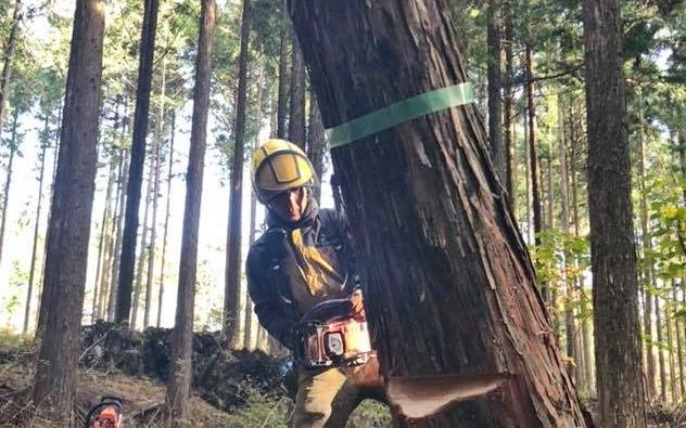 【しずおか未来の森サポーター協定】トヨペットの森