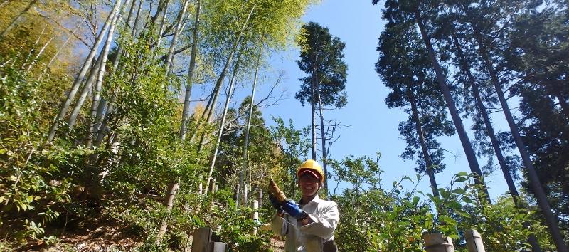 「里山の植物を知ろう」from 里山づくりプロジェクト