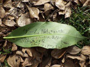 【報告/速報】里山BASE in winter12/26(木)