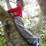 ねぇ、木に登れたよ!