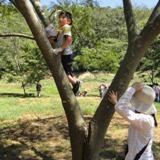 木の上で待ち伏せ…