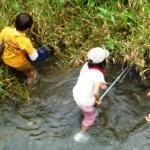 川で生き物探し