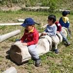 【年少~小2】里山ecoプラン「野草天ぷらと竹筒ごはん」