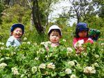【幼児親子】「幼児自然あそび体験会」のご案内
