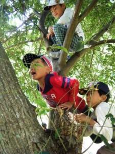 木登り助け合い
