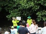 【報告】ワク☆ドキ★ぐりぃ~んず 7/23「カッパ先生の川遊び教室」