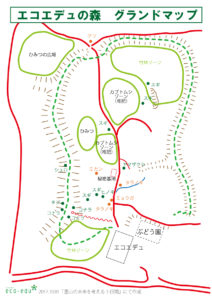 【報告】10/27「森を知り、森とかかわる基礎講座」第5回
