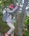 私も木登り