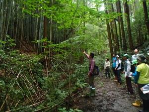 【報告】9/2「森を知り、森とかかわる基礎講座」プレ講座