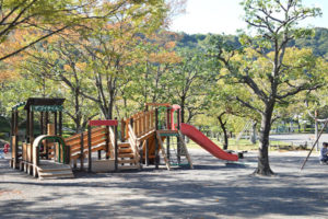 お散歩コースの城北公園