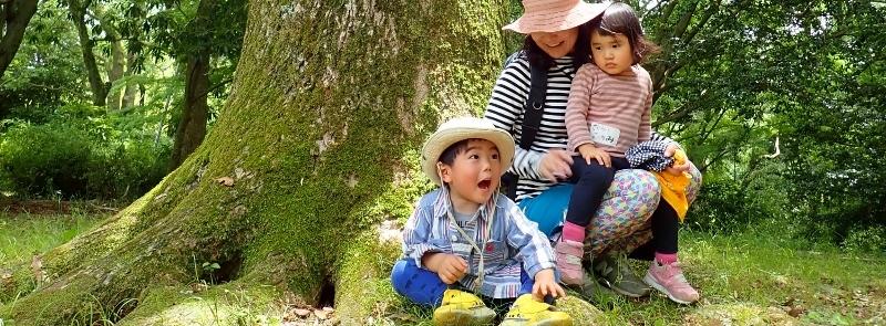 【しらべる事業】乳幼児期の自然体験の実態調査 2019-2020