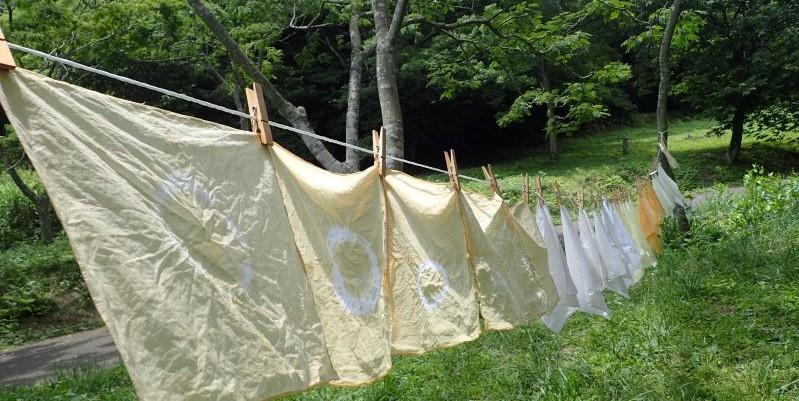 里山しごと体験講座「親子でチャレンジ!森の色に布を染めてみよう!」