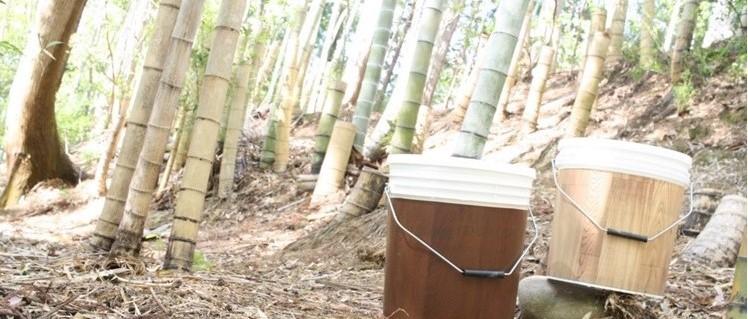 5/21(金)森へのとびら~コンポスト講座~