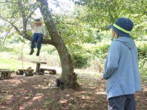 【里山BASE】木登りチャレンジ【報告】
